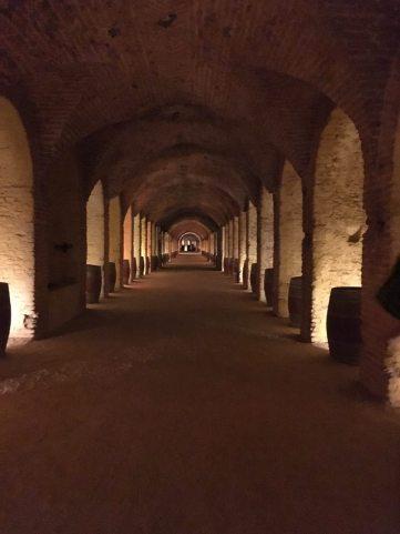 Bodega del Real Cortijo de san Isidro - winery tour