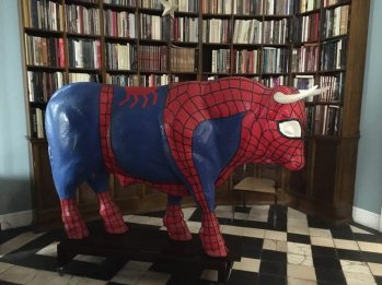 There was a SpiderBull in the living room!