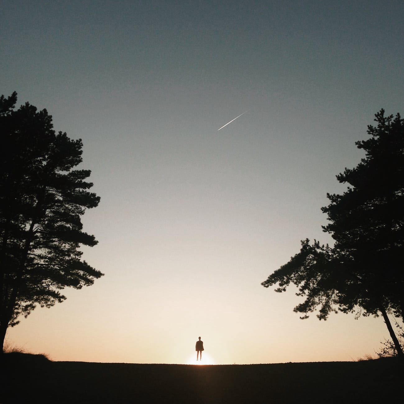 silhouette of anonymous person looking at falling star