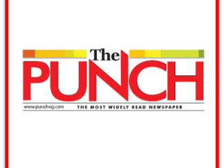 'Use skills to improve your economic well-being' - Punch Newspapers