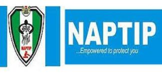 Make Sacrifice, Commitment Your Watchword, Naptip Chief Urges Staff
