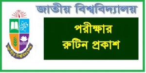 National University Professional Course Exam Routine 2019