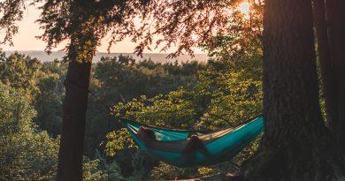 Top 3 most popular hammock spots on main campus