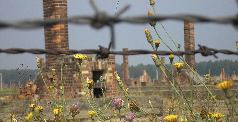 Auschwitz-Birkenau By WeEzE CC-BY-SA-3.0 or 2.5-2.0-1.0