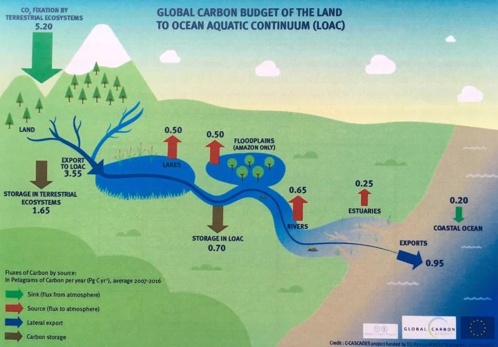 Flux globaux de carbone entre les terres et les océans, en Petagrammes de carbone par an (moyenne 2007-2016) © C-CASCADES/Global Carbon Project