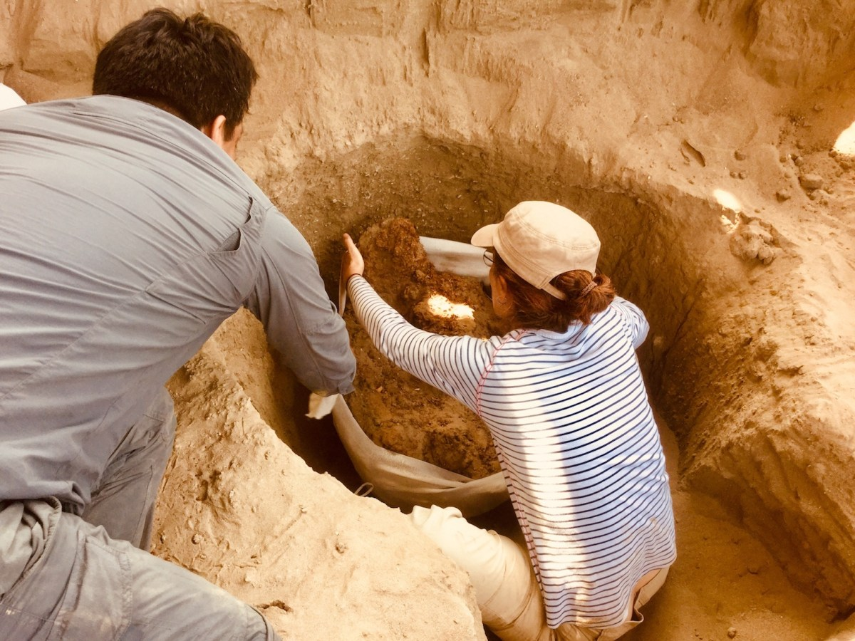 Extraction d'une momie par les archéologues du projet Ychsma, sur le site de Pachacamac, au Pérou. © ULB-CReA-Patrimoine