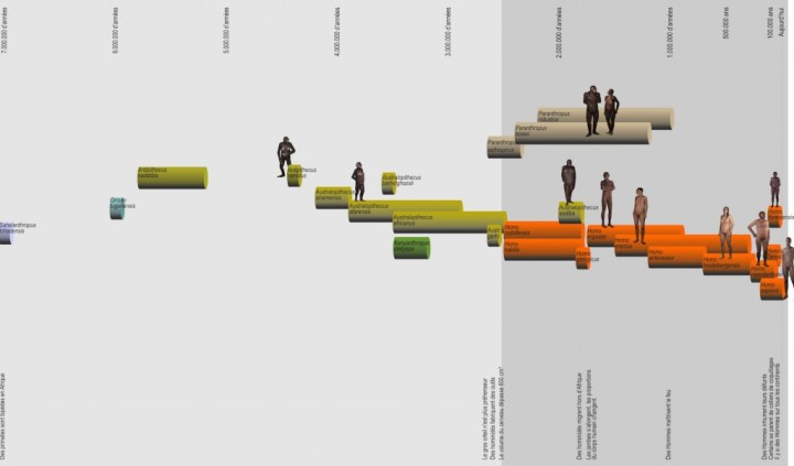 evolution humaine ligne temps