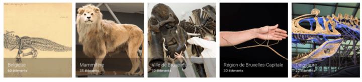 """Muséum des Sciences Naturelles """"en ligne""""."""