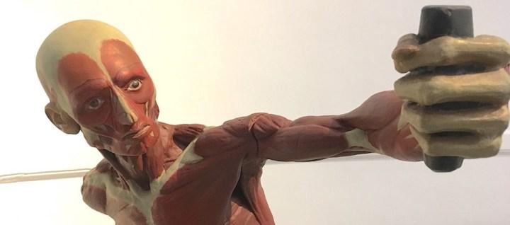 Selfie antique ? Cette oeuvre intitulée «Le guerrier combattant dit Gladiateur Borghèse» est un plâtre polychrome de 1827 qui fait partie des collections de la Faculté de médecine de l'Université de Montpellier