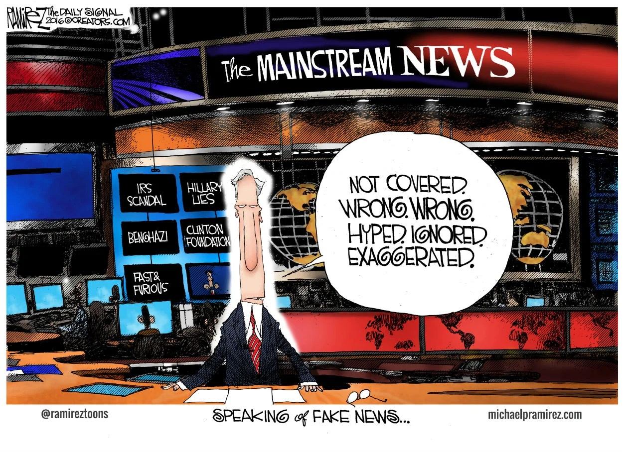 Image result for cartoons fake news