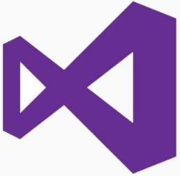 Visual Studio Professional