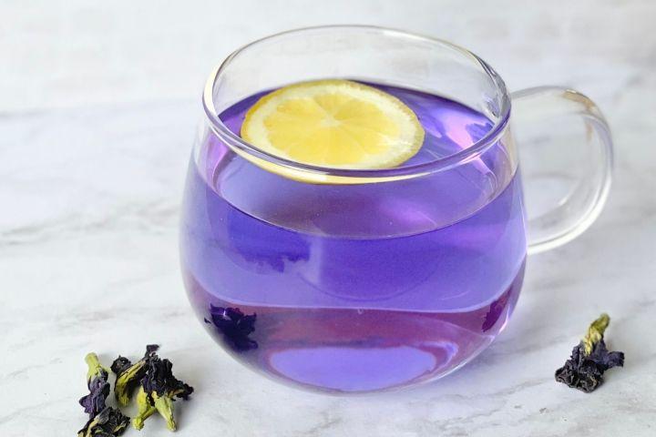 single tea cup of blue tea with lemon slice