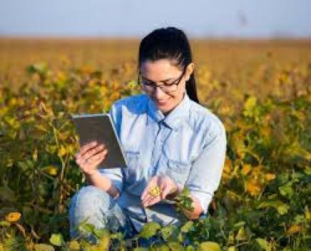 Agricultural Economist Salary In Nigeria