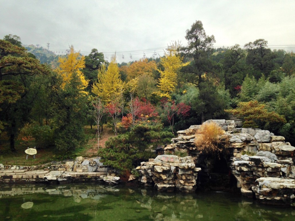 """Taken at """"Fragrant Hills"""", a beautiful place to hike in the Fall. Fragrant Hills is known for its bright red and yellow leaves painted across the hills during Fall. Esther Chang 