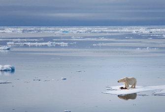 History Teaches How to Unite In the Face of a Common Enemy: Climate Change