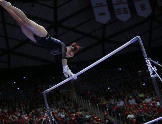 Diversity in Gymnastics Inspires All