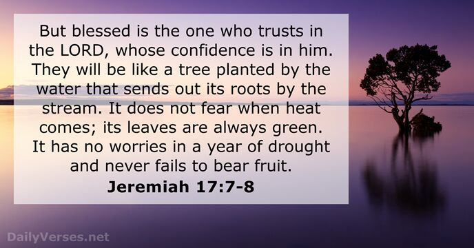 Jeremiah 17 7 8 Bible Verse Of The Day DailyVerses Net