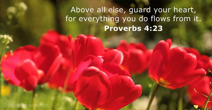 Hd Wallpaper Flower Quote Proverbs 4 23 Bible Verse Of The Day Dailyverses Net