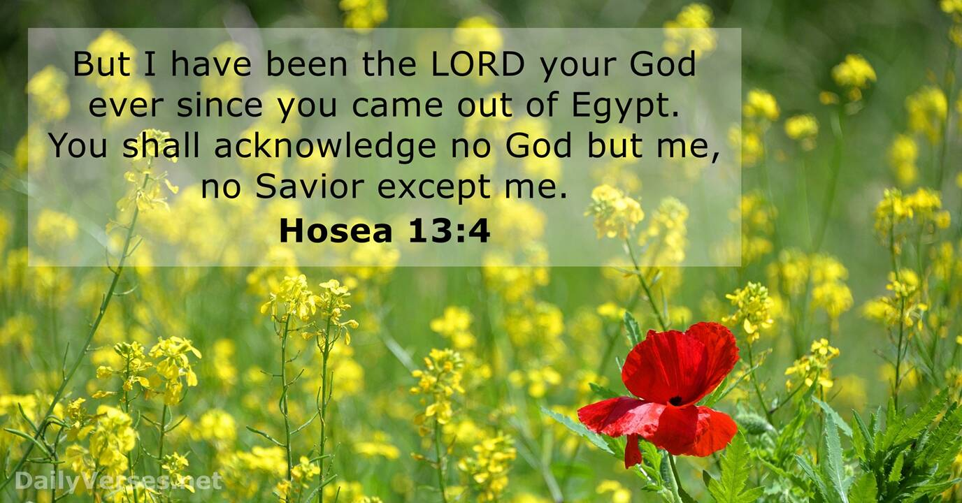 Jesus Bible Quotes Wallpaper Hosea 13 4 Bible Verse Of The Day Dailyverses Net
