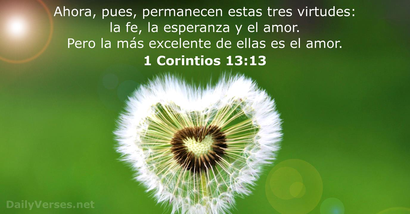 Biblicos De Textos Amor