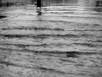 کراچی ،شدید بارش ، سڑکیں ندی نالوں میں تبدیل
