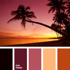 Orange and pink sunset