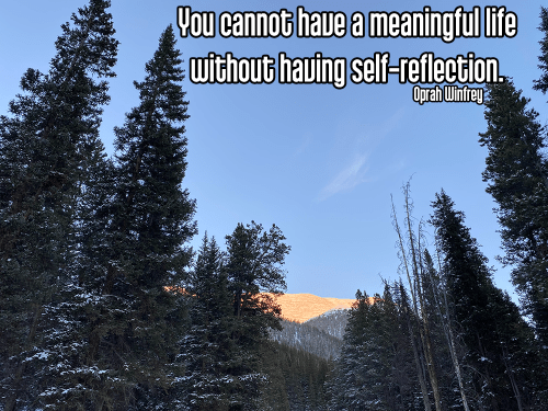blue sky with shadowy pine trees alpine sunset reflecting pink on snow capped mountain -svadhyaya self-study self-reflection Quote: You cannot have a meaningful life without having self-reflection. - Oprah Winfry