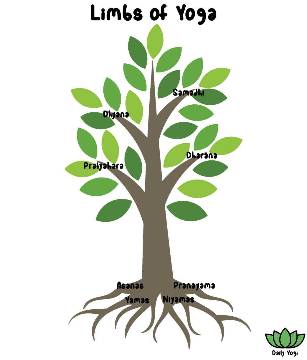 Daily Yogi - brown tree trunk and green leaves showing upper and lower Limbs of Yoga - Yamas, Niyamas, Asanas, Pranayama, Pratyahara, Dharana, Dhyana, Ishvara Pranidhana