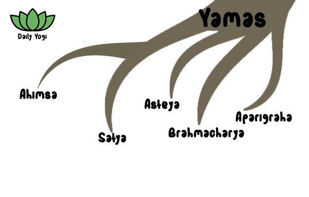 Daily Yogi branch of Yamas lower limb of yoga - Ahimsa, Satya, Asteya, Brahmacharya, Aparigraha
