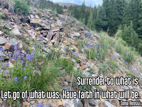 alpine grassy ledge with small purple flowers and green leaves with cool perspective looking out into rocky mountains - ishvara pranidhana acceptance surrender Quote: Surrender to what is. Let go of what was. Have faith in what will be. - Sonia Ricotti