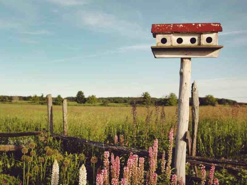 photo of rural Wisconsin