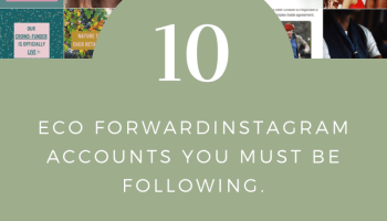 10 eco forward Instagram accounts you need to follow