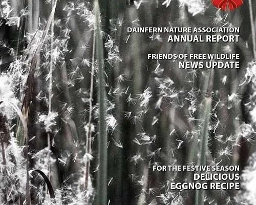Infocus your community magazine – Dainfern Nature Association December 2016