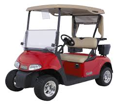 UNDERAGE GOLF CART DRIVERS