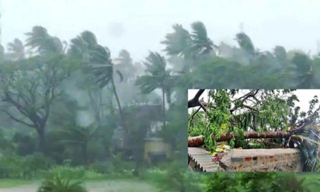আম্পানে সারাদেশে মৃত্যু ১৬: স্বাস্থ্য অধিদফতর