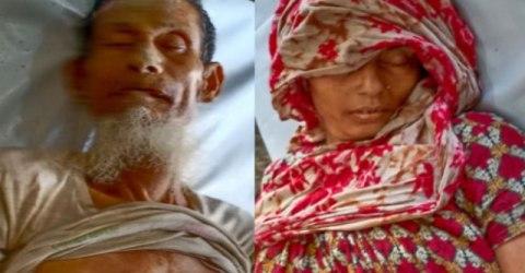কাউখালীতে বিদ্যুৎস্পষ্ট হয়ে স্বামী- স্ত্রী'র মর্মান্তিক মৃত্যু