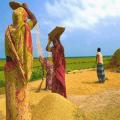 চাঁপাইনবাবগঞ্জের সন্তান রাবি প্রেসক্লাবের সাবেক সভাপতি আইসিটি আইনে কারাগারে