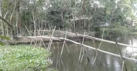 মির্জাগঞ্জে সাঁকো দিয়ে চলাচল-চরম ভোগান্তিতে এলাকাবাসী