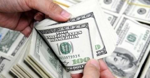 রিজার্ভের নতুন রেকর্ড ৪৬ বিলিয়ন ডলার