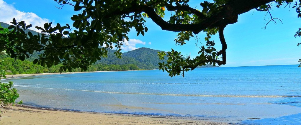 daintree safari private tour