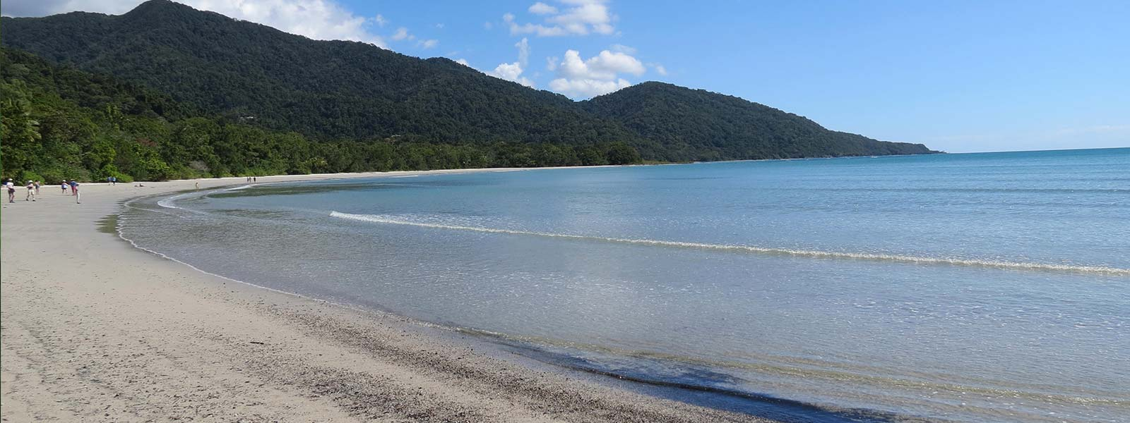daintree-safaris-cape-tribulation-beach