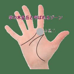 手のひらの木星丘