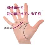 感情線の枝分かれ ⑧別の線が指に向かって出ている手相