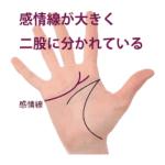 感情線の枝分かれ ①感情線が二股に分かれている手相4種