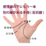 感情線の下にもう一本別の線がある手相-その2(反抗線)