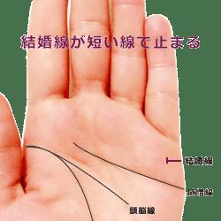 結婚線が短い線で止まる手相の見方