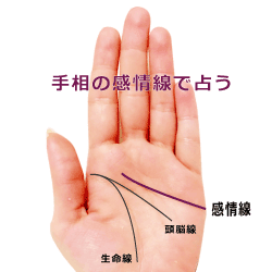 kanzyousen_sen_s
