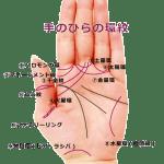 【手相紋占い8】手のひらに環紋(リング)がある手相