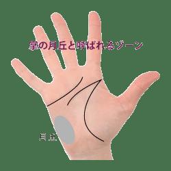 手のひらのルナ