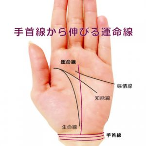 運命線の起點で占う方法(14種) | 簡単な手相の見方を伝授します
